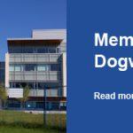 Memorial Dogwood Tree